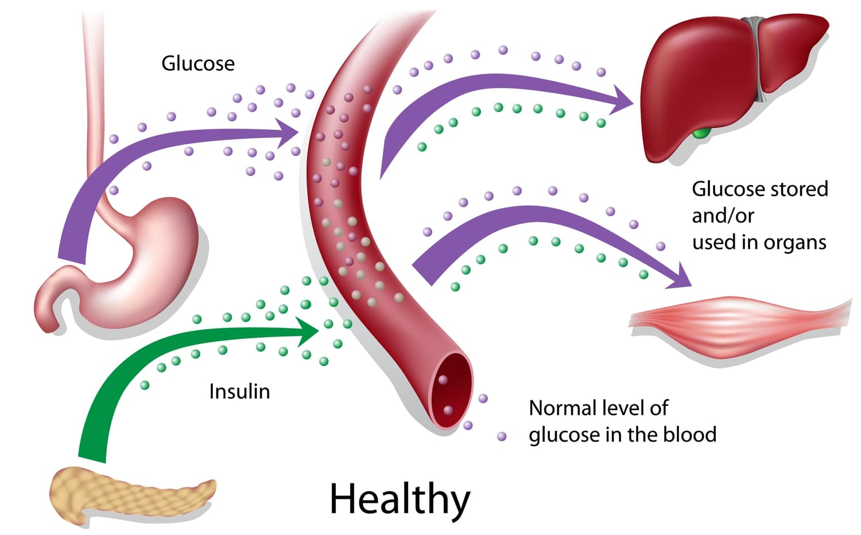 Healthy glucose level